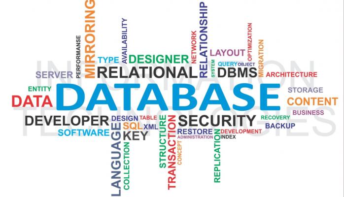 Database Administrator là gì?